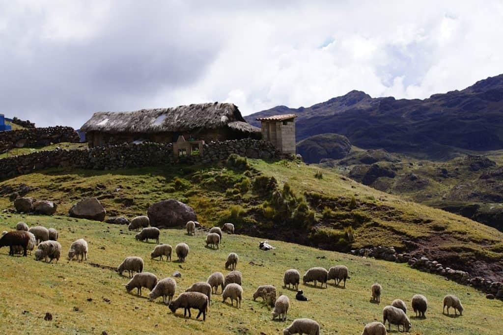 lares-village