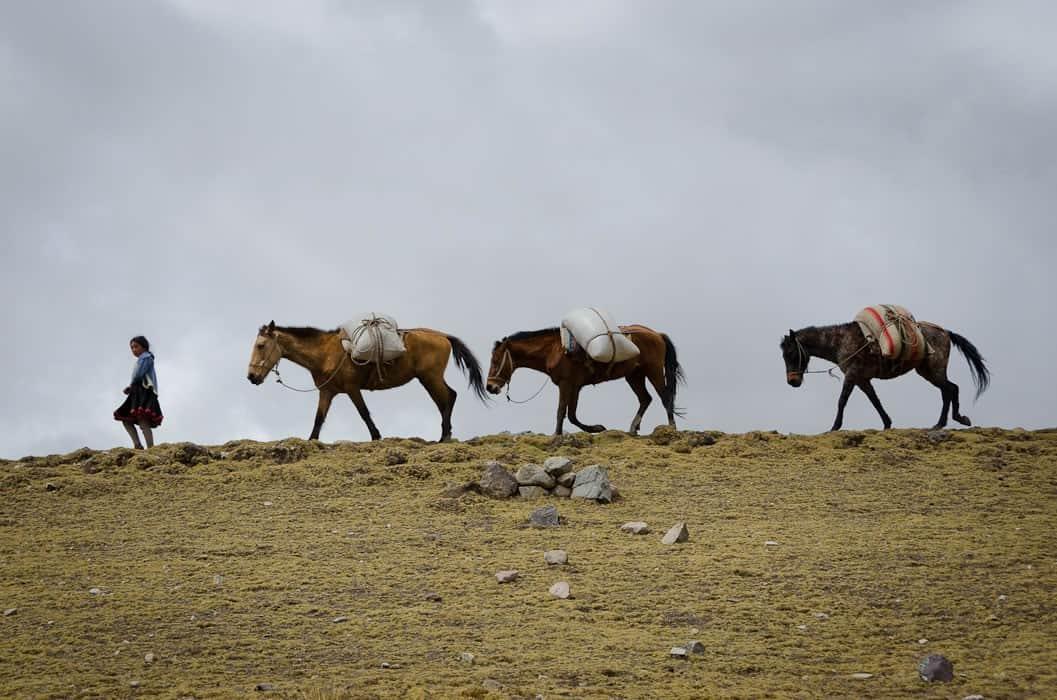 ausangate-trek-5-days-horses