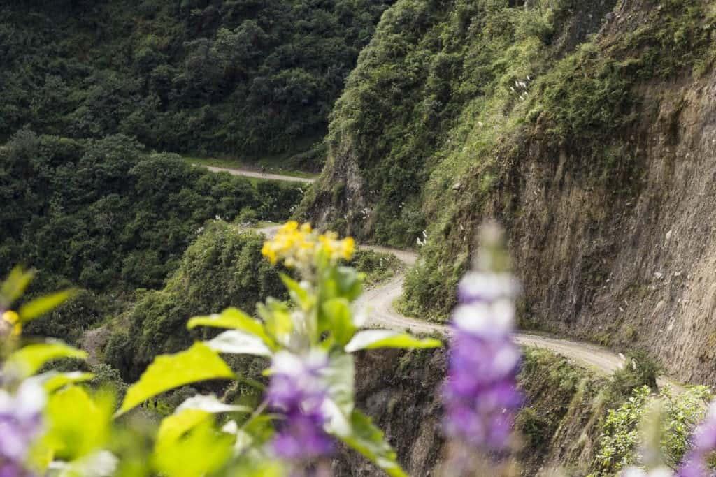 Winding-path-Peru-hike