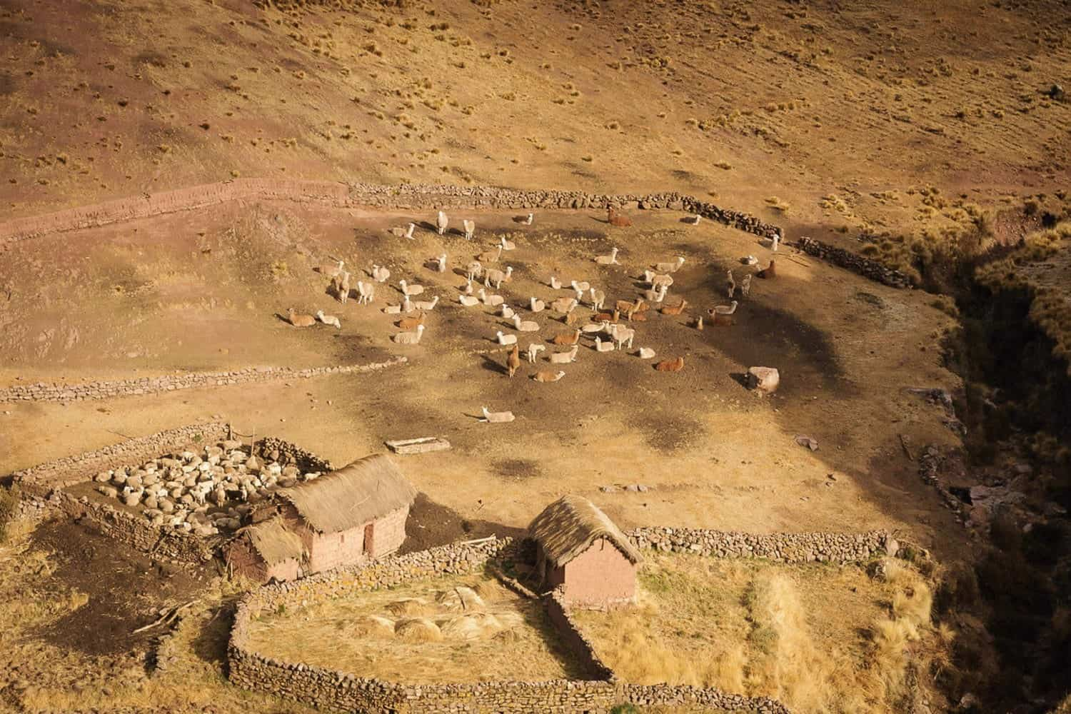 Traditional Andean community