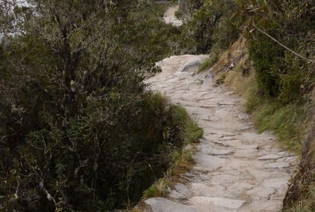 Inca trail Lares